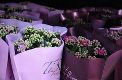 Весны Flwoers в denamrk Стоковое Фото
