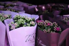 Весны Flwoers в denamrk Стоковая Фотография RF