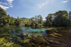 Весны Te Waikoropupu Стоковое Изображение