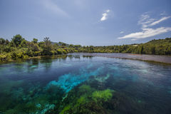 Весны Te Waikoropupu Стоковое Изображение RF
