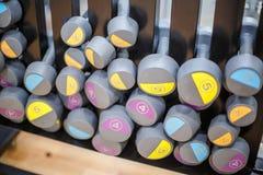 Весы оборудования osports гантели Стоковая Фотография RF