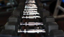Весы руки в спортзале Стоковые Изображения RF