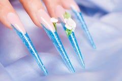 весьма длинные ногти Стоковая Фотография RF