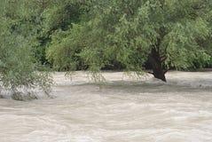 Весьма погода и flooding Стоковое Фото