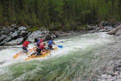 Весьма спортсмены идут через трудный речной порог турбины на катамаране стоковые изображения