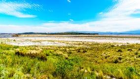 Весьма - уровень отлива в запруде Theewaterkloof которая главный источник для водоснабжения к Кейптауну стоковое изображение rf