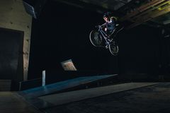 Весьма фокус Bmx в skatepark стоковые изображения rf