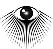 весь видеть глаза Стоковые Фото