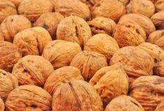 Весь грецкий орех Стоковая Фотография RF