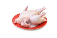 Весь изолированный цыпленок Стоковое Изображение