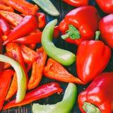 Весь и отрезанный красный и зеленый болгарский перец Стоковое Изображение RF