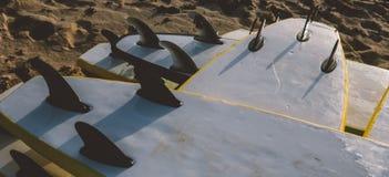 Весь конец-вверх surfboards размеров Заниматься серфингом лагерь и доски различных размеров для серфинга Стоковая Фотография