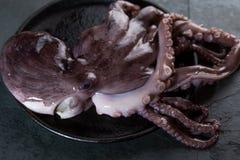 Весь свежий сырцовый осьминог на черной плите Предпосылка шифера стоковые фото