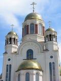 весь собор называет saints России стоковые изображения