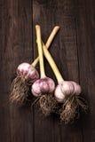 Весь чеснок на деревянной предпосылке Стоковые Фото