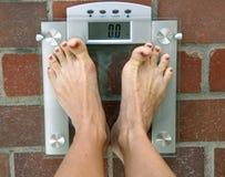 вес Стоковые Изображения