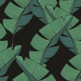 Ветви банана Картина вектора безшовная для дизайна Стоковая Фотография