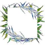 Ветви вербы в рамке стиля акварели Стоковые Фотографии RF