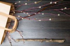 Ветви вербы Pussy на черной деревянной предпосылке Хворостины вербы в предыдущей весне пятно праздника пасхальныхя предпосылки кр Стоковые Изображения