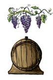Ветви виноградины акварели и бочонок вина иллюстрация штока