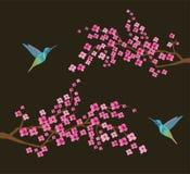 Ветви вишневого цвета вектора с колибри иллюстрация штока