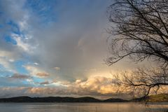 Ветви дерева на озере подпирают на заходе солнца, с красивым, теплым co Стоковое Фото