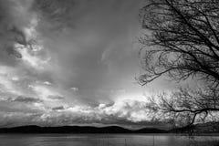 Ветви дерева на озере подпирают, с красивыми, большими облаками в Стоковая Фотография RF