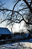 Ветви дерева около сельского дома в дне зимы снежном солнечном против предпосылки ясного неба, Беларуси Стоковая Фотография RF