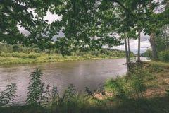 ветви дуба над рекой лета - винтажное влияние Стоковое фото RF