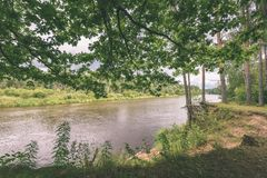 ветви дуба над рекой лета - винтажное влияние Стоковое Фото