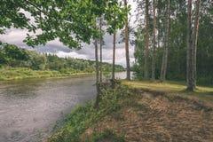 ветви дуба над рекой лета - винтажное влияние Стоковые Фотографии RF