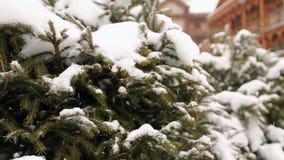 Ветви ели снега падая, деревянные коттеджи на предпосылке Сильный снегопад на лыжном курорте горного села холодно сток-видео