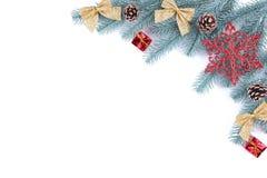 Ветви ели с украшением рождества на белой предпосылке стоковое изображение rf