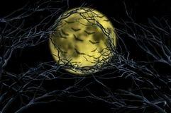 Ветви дерева вокруг летать летучих мышей Стоковые Изображения RF
