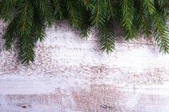 Ветви дерева на деревянной предпосылке Стоковое Изображение