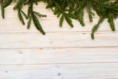 Ветви дерева на старой белизне деревянной доски Стоковое Изображение