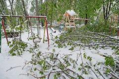 Ветви дерева с зелеными листьями весны сломали под весом влажных снега и ветра, в зоне спать Стоковое Фото