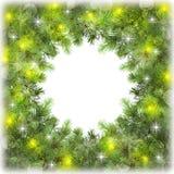 Ветви деревьев: света, bokeh и sparkles изолировано Стоковое фото RF