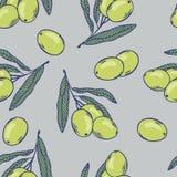 Ветви картины оливок безшовной Еда нарисованная рукой бесплатная иллюстрация