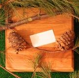 Ветви конуса кедра и сосны на стойке сделанной дуба Стоковая Фотография RF