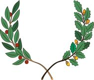 Ветви лавра и дуба с лентой бесплатная иллюстрация