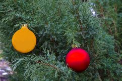 Ветви можжевельника с шариками рождества Стоковые Фото