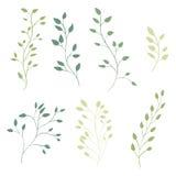 Ветви нарисованные рукой богато украшенные с листьями вектор Стоковые Фото