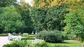 Ветви на парке Стоковые Фото