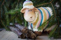 Ветви овечки и спруса игрушки Стоковые Фотографии RF