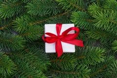 Ветви подарочной коробки и рождественской елки Стоковые Изображения RF