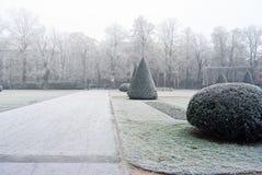 Ветви покрыли изморозь в парке зимний день Стоковое Фото