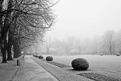 Ветви покрыли изморозь в парке зимний день Стоковые Фотографии RF