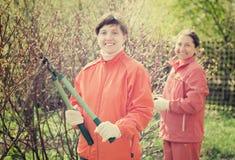 Ветви подрезанные женщинами в саде стоковое фото rf