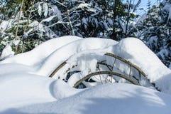 Ветви предусматриванные в снежке Стоковая Фотография